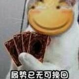 dH1Xj